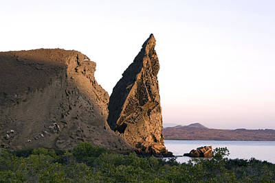 Photograph - Pinnacle Rock by David Hosking