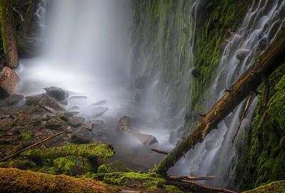Photograph - Proxy Falls by Cat Connor