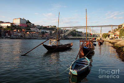 Winter Animals Rights Managed Images - River Douro in Porto, Portugal Royalty-Free Image by Francisco Javier Gil Oreja