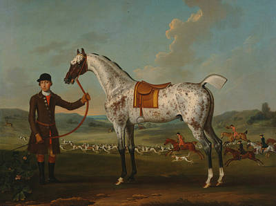 Painting - Scipio, A Spotted Hunter, The Property Of Colonel Roche by Thomas Spencer