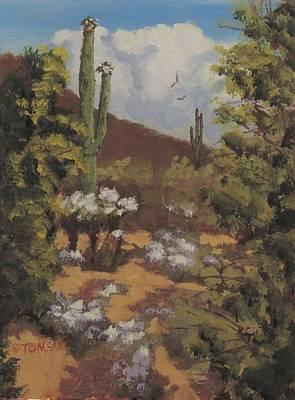 Sonoran Desert Landscape Original