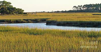 South Carolina Salt Marsh Art Print