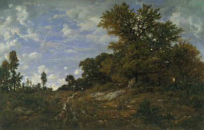 Painting - The Edge Of The Woods At Monts-girard, Fontainebleau Forest by Theodore Rousseau