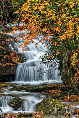Photograph - Waterfall And Fall Color by Thomas R Fletcher