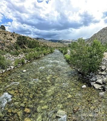 Photograph - West Walker River by Joe Lach