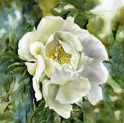 Painting - White Peony by Alfred Ng