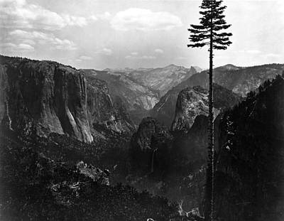 Photograph - Yosemite Valley by Carleton E. Watkins