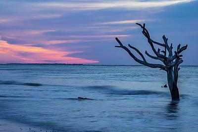 Photograph - Scenes Around Hunting Island South Carolina In Summer by Alex Grichenko
