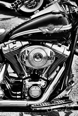 Photograph - 2003 Heritage Softail by Tim Gainey