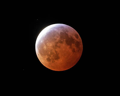 Photograph - 2019 Blood Wolf Super Moon Eclipse by Toby McGuire