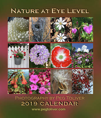 Photograph - 2019 Nature Calendar by Peg Toliver