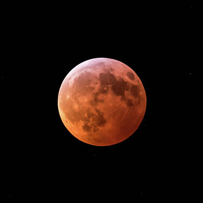 Photograph - 2019 Super Blood Moon Lunar Eclipse Square by Terry DeLuco