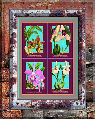 Vermeer Rights Managed Images - Antique Orchids Quatro on Rusted Metal and Weathered Wood Plank Royalty-Free Image by Baptiste Posters