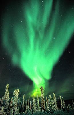 Photograph - Aurora Borealis Or Northern Lights by Robert Postma