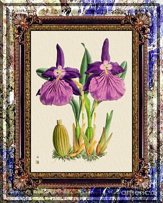 Just Desserts - Vintage Orchid Antique Design Marble Purple by Baptiste Posters