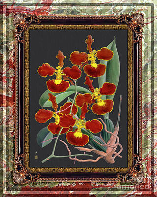 Kitchen Signs - Vintage Orchid Antique Design Onyx Dark Pakistan by Baptiste Posters
