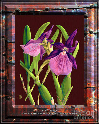 Mixed Media Royalty Free Images - Classic Vintage Orchid and Hyper-Realism Painting of Rusted Metal Royalty-Free Image by Baptiste Posters