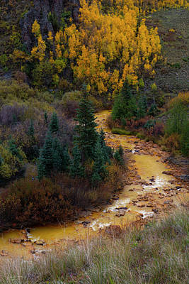 Photograph - River Of Gold by Richard Raul Photography