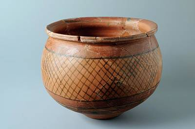 Beverly Brown Fashion Rights Managed Images - . Roman ceramic pot Royalty-Free Image by Carlos Mora