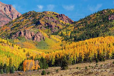 Photograph - Autumn Leaves On Pikes Peak by Steve Krull