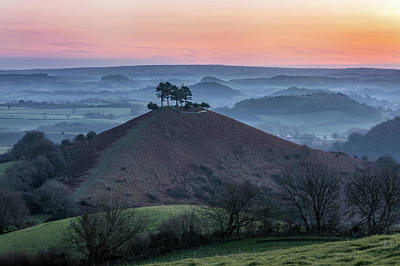 Photograph - Colmers Hill - England by Joana Kruse