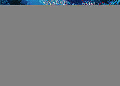 Digital Art - Coral Reef Scenery With Fish by Georgette Douwma