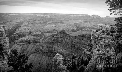 Photograph - Grand Canyon Black White  by Chuck Kuhn