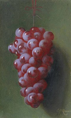 Painting - Still Life With Grapes by Carducius Plantagenet Ream