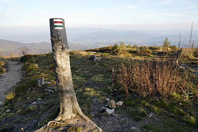 Photograph - Trail Marker by Joanna Machel