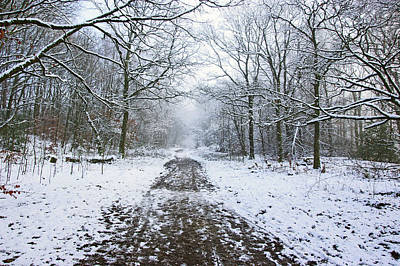 Photograph - 30/01/19  Rivington. Lower Barn. Arboretum Path. by Lachlan Main