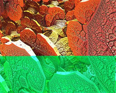 Digital Art - 3d17d-49a by Jeff Berkeley