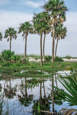 Photograph - Beach Scenes At Hunting Island South Carolina by Alex Grichenko