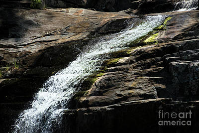 Photograph - Cedar Creek In Samford, Queensland. by Rob D