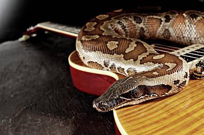 Photograph - Epiphone Slash Appetite Les Paul Guitar by Total Guitar Magazine