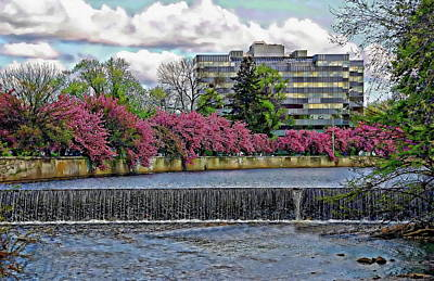 Photograph - Mill River Park by Anthony Dezenzio