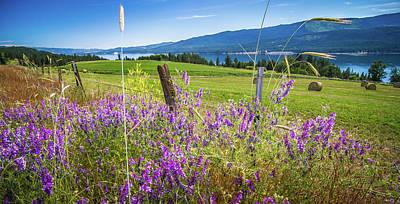 Photograph - Nature Scenics Around Spokane River Washington by Alex Grichenko