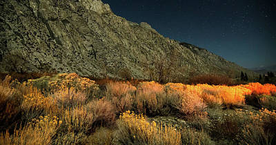Photograph - Sierra National Park Mountains Near Mammoth Lakes Californit by Alex Grichenko