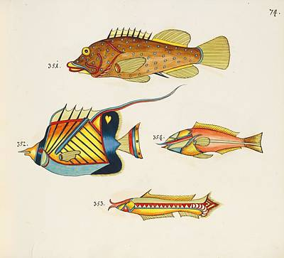 Mellow Yellow - Tropical Fishes of the East Indies by MotionAge Designs