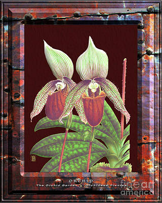 Thomas Kinkade - Classic Vintage Orchid and Hyper-Realism Painting of Rusted Metal by Baptiste Posters