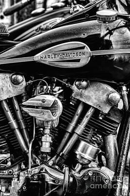 Photograph - 46 Knucklehead by Tim Gainey