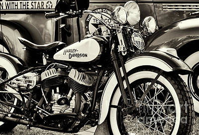 Photograph - 47 Flathead by Tim Gainey