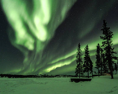 Photograph - Northern Lights by Laura Hedien