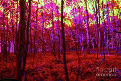 Digital Art - 5-8-2009pabcdefg by Walter Paul Bebirian