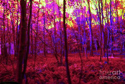 Digital Art - 5-8-2009pabcdefgh by Walter Paul Bebirian