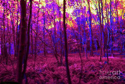 Digital Art - 5-8-2009pabcdefghi by Walter Paul Bebirian