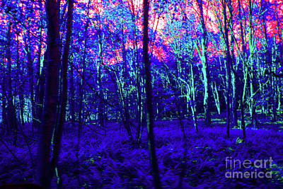 Digital Art - 5-8-2009pabcdefghijklm by Walter Paul Bebirian