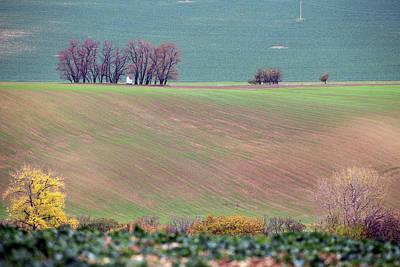 Photograph - Autumn In Moravia 6 by Dubi Roman