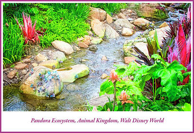 Photograph - Pandora Ecosystem, Animal Kingdom, Walt Disney World by A Gurmankin