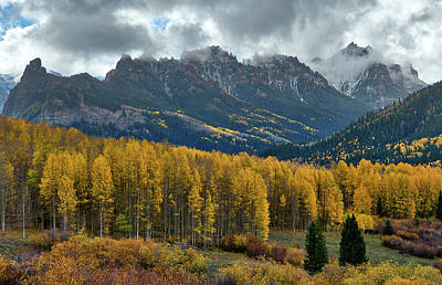 Photograph - Aspen Avalanche by Richard Raul Photography