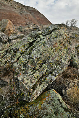 Photograph - Ruby Mountain Boulder Field  by Ray Mathis